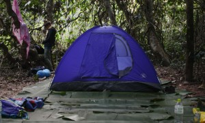 Nam Ha Evergreen Forest Camping in Nam Ha Laos