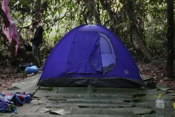 Nam Ha Evergreen Forest Camping in Nam Ha Laos