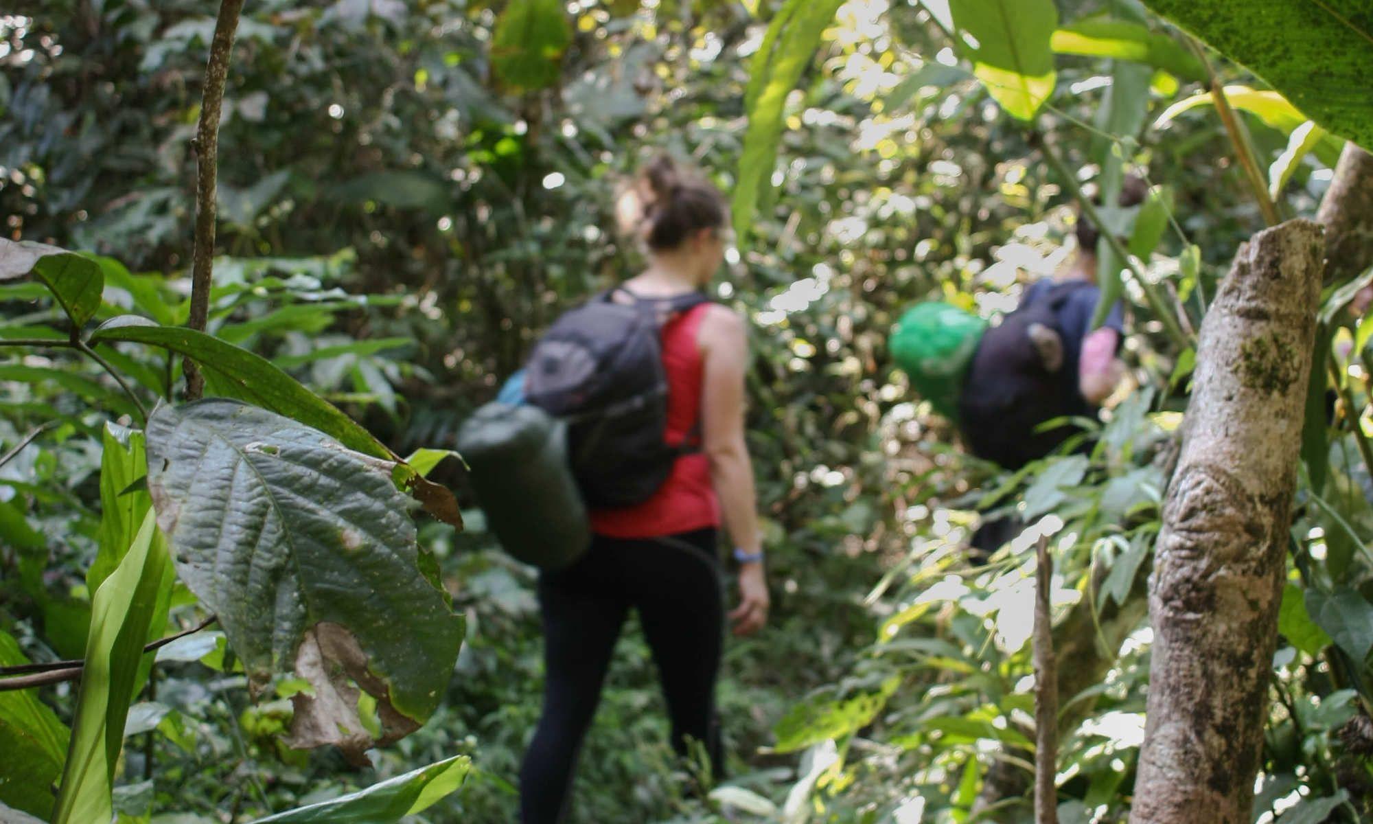 Rainforest Tour in Laos Nam Ha National Protected Area